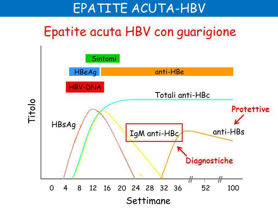 Epatite acuta HBV con guarigione