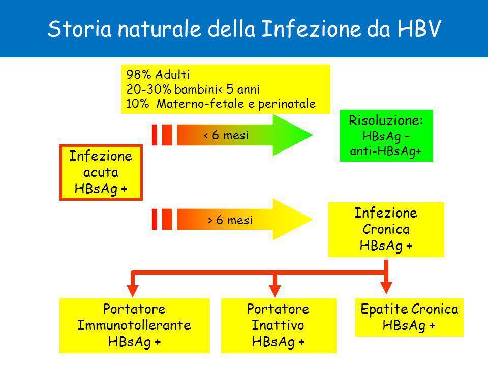 Storia naturale della Infezione da HBV