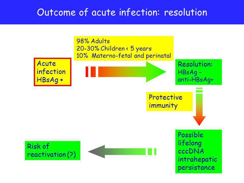 Outcome of acute infection: resolution