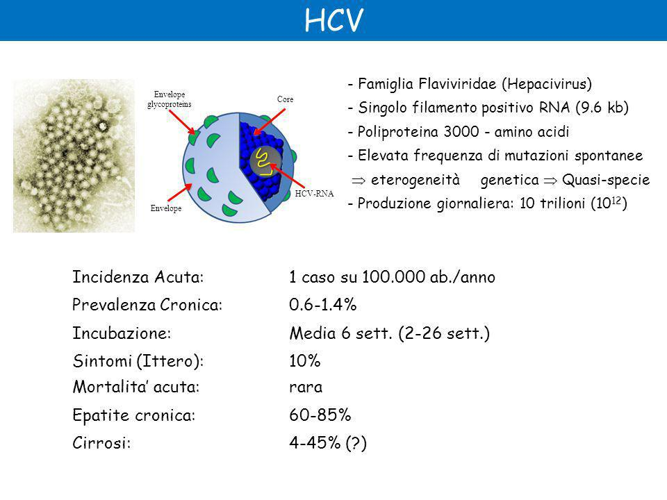 HCV Incidenza Acuta: 1 caso su 100.000 ab./anno