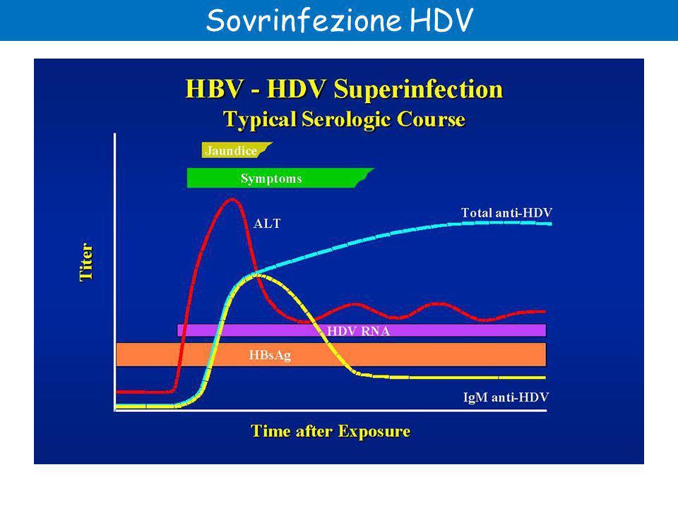 Sovrinfezione HDV