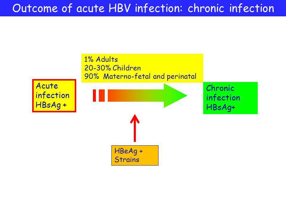 Outcome of acute HBV infection: chronic infection