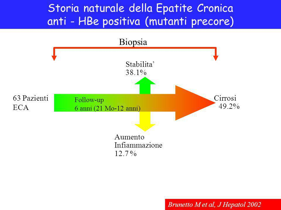 Storia naturale della Epatite Cronica