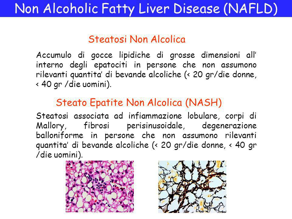 Non Alcoholic Fatty Liver Disease (NAFLD)