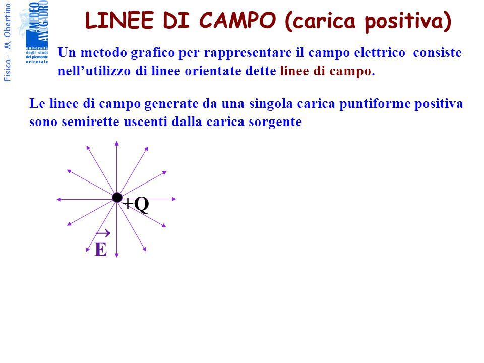 LINEE DI CAMPO (carica positiva)