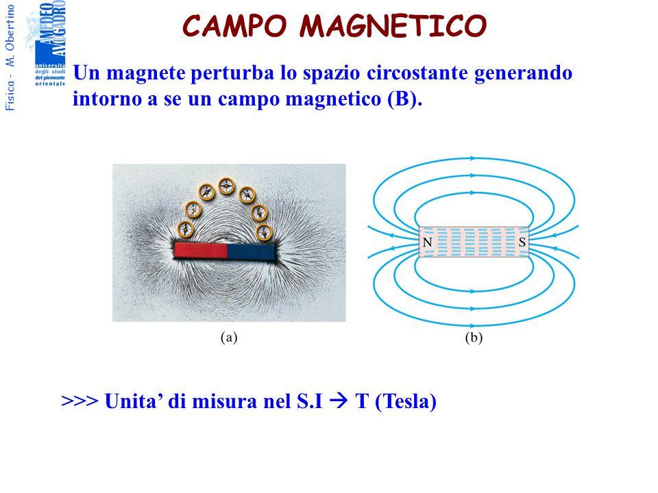 CAMPO MAGNETICO Un magnete perturba lo spazio circostante generando intorno a se un campo magnetico (B).