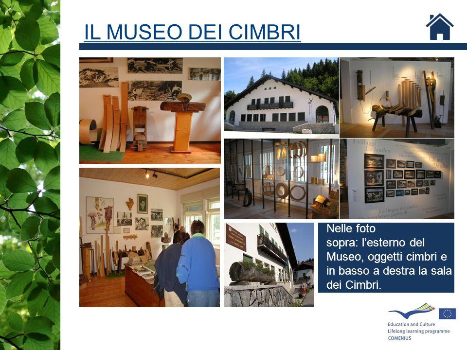 IL MUSEO DEI CIMBRI Nelle foto sopra: l'esterno del Museo, oggetti cimbri e in basso a destra la sala dei Cimbri.