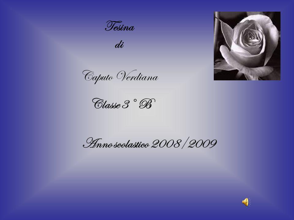 Tesina di Caputo Verdiana Classe 3° B Anno scolastico 2008/2009