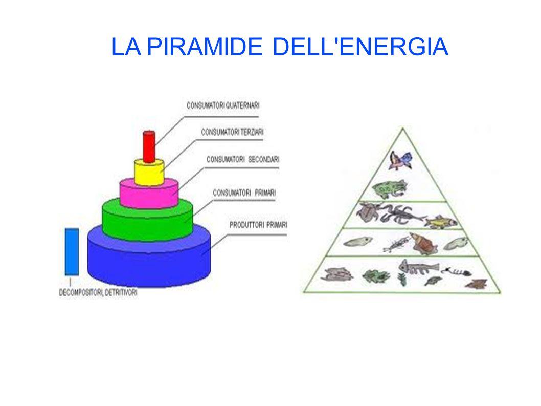 LA PIRAMIDE DELL ENERGIA