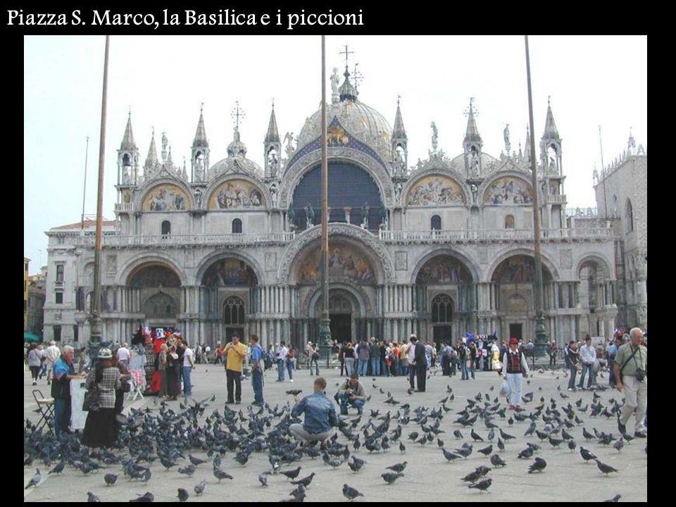 Piazza S. Marco, la Basilica e i piccioni