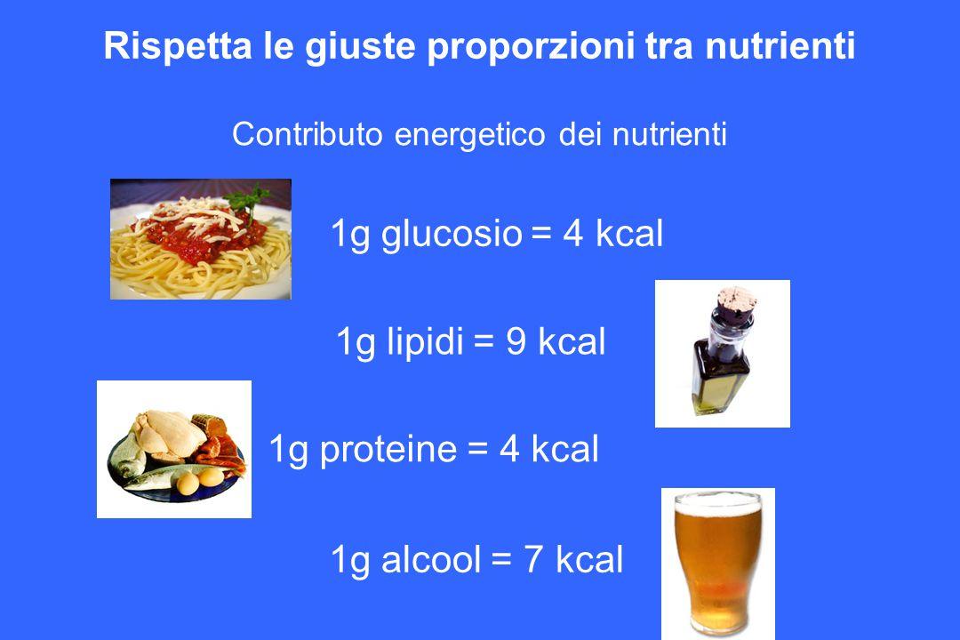 Rispetta le giuste proporzioni tra nutrienti