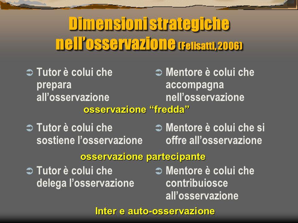 Dimensioni strategiche nell'osservazione (Felisatti, 2006)