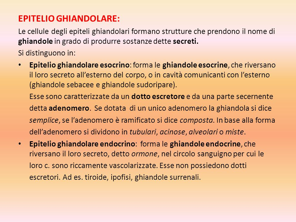 EPITELIO GHIANDOLARE:
