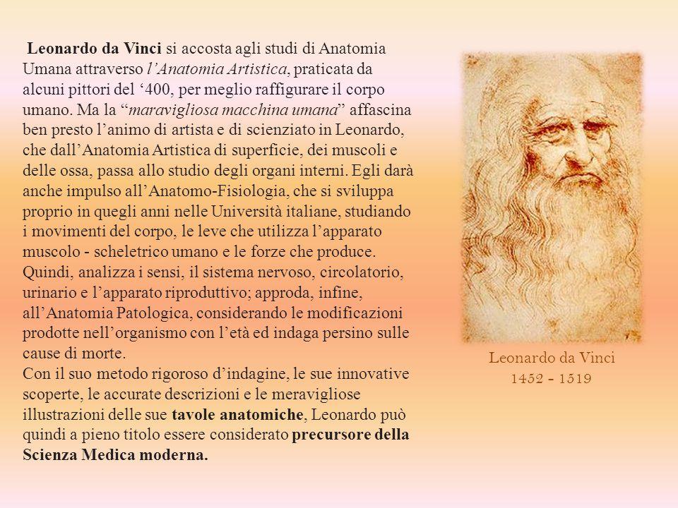 Leonardo da Vinci si accosta agli studi di Anatomia Umana attraverso l'Anatomia Artistica, praticata da alcuni pittori del '400, per meglio raffigurare il corpo umano. Ma la maravigliosa macchina umana affascina ben presto l'animo di artista e di scienziato in Leonardo, che dall'Anatomia Artistica di superficie, dei muscoli e delle ossa, passa allo studio degli organi interni. Egli darà anche impulso all'Anatomo-Fisiologia, che si sviluppa proprio in quegli anni nelle Università italiane, studiando i movimenti del corpo, le leve che utilizza l'apparato muscolo - scheletrico umano e le forze che produce. Quindi, analizza i sensi, il sistema nervoso, circolatorio, urinario e l'apparato riproduttivo; approda, infine, all'Anatomia Patologica, considerando le modificazioni prodotte nell'organismo con l'età ed indaga persino sulle cause di morte.