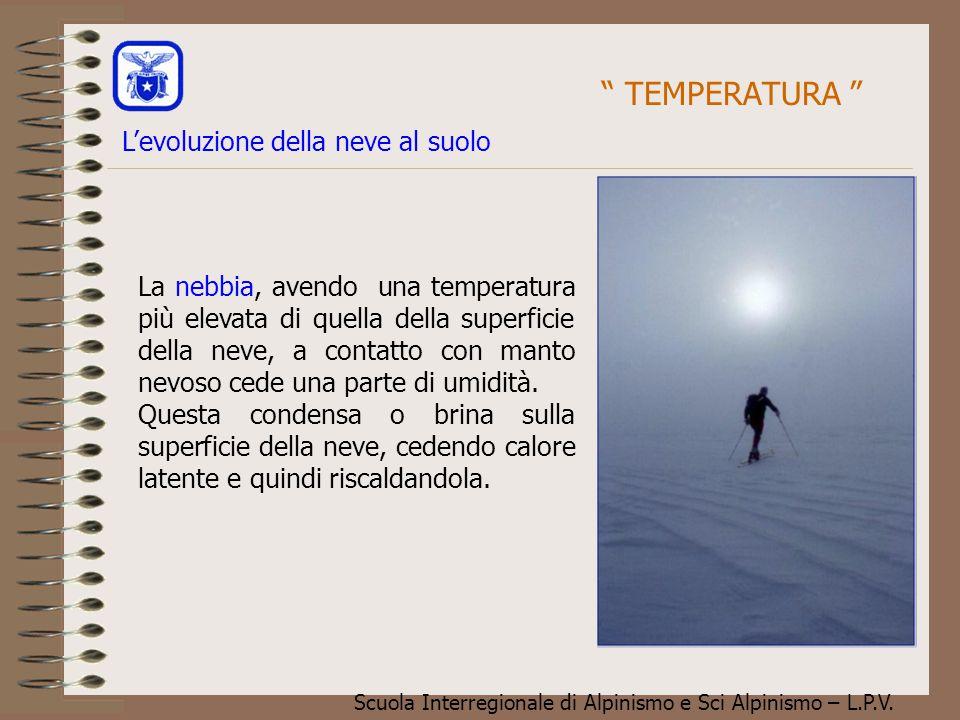 TEMPERATURA L'evoluzione della neve al suolo