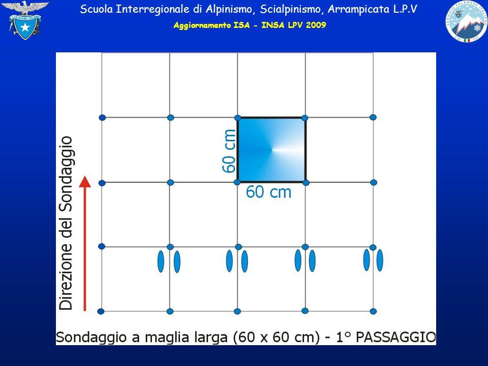 Aggiornamento ISA - INSA LPV 2009