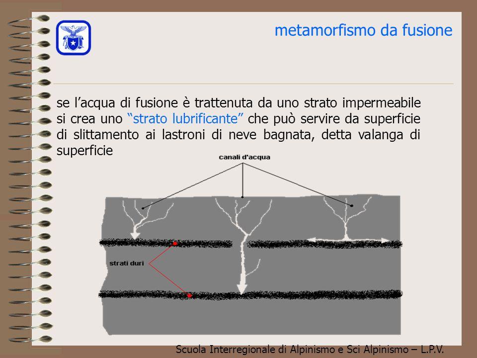 metamorfismo da fusione