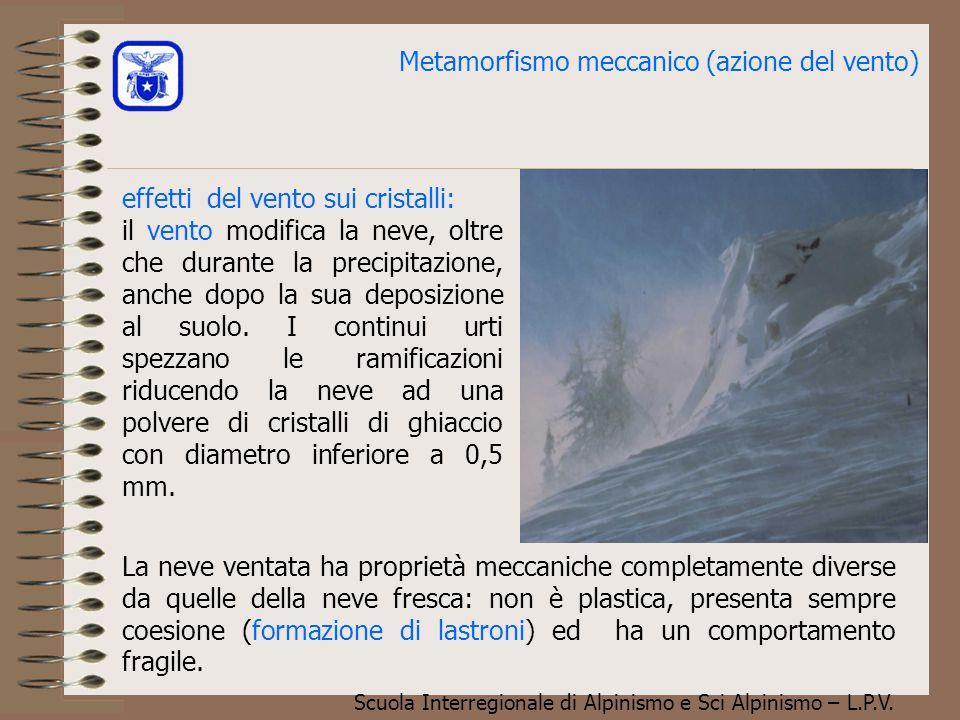 Metamorfismo meccanico (azione del vento)