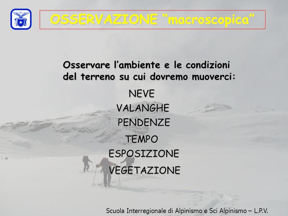 OSSERVAZIONE macroscopica