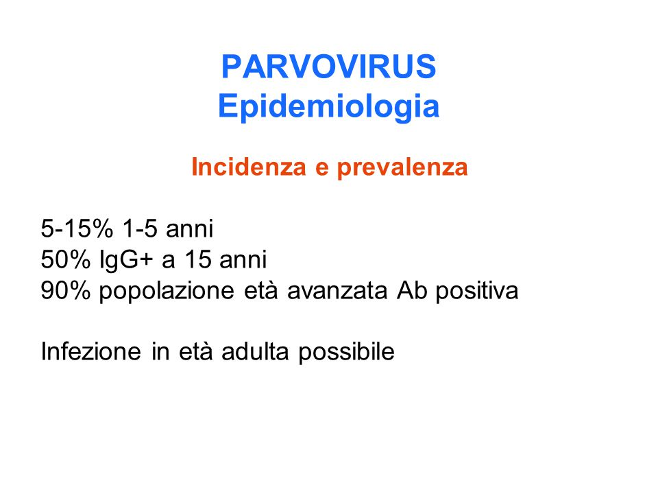 PARVOVIRUS Epidemiologia