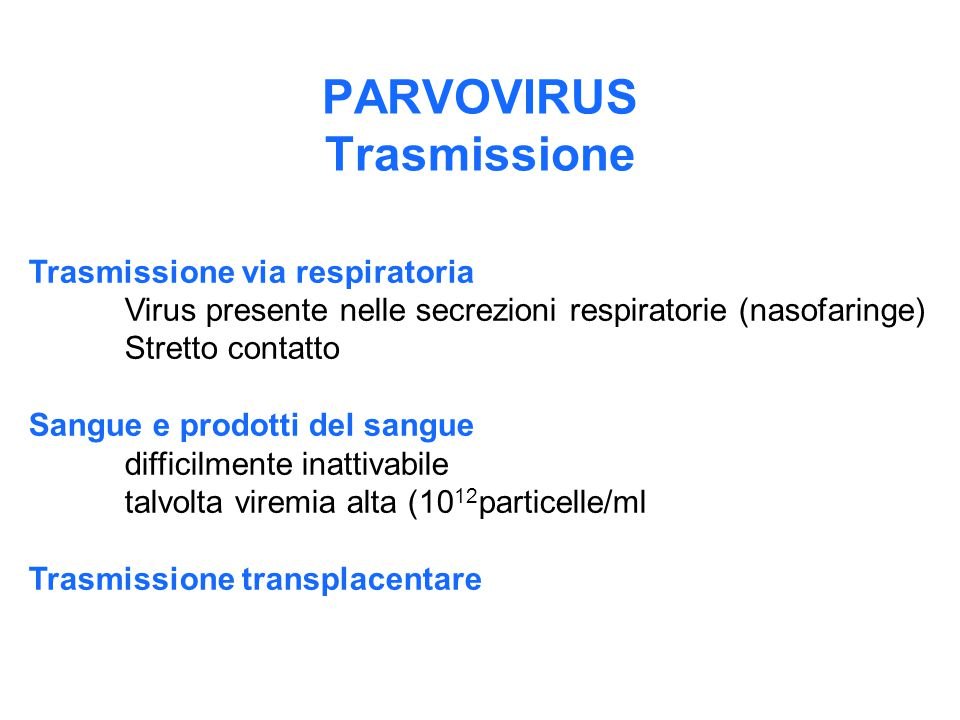PARVOVIRUS Trasmissione