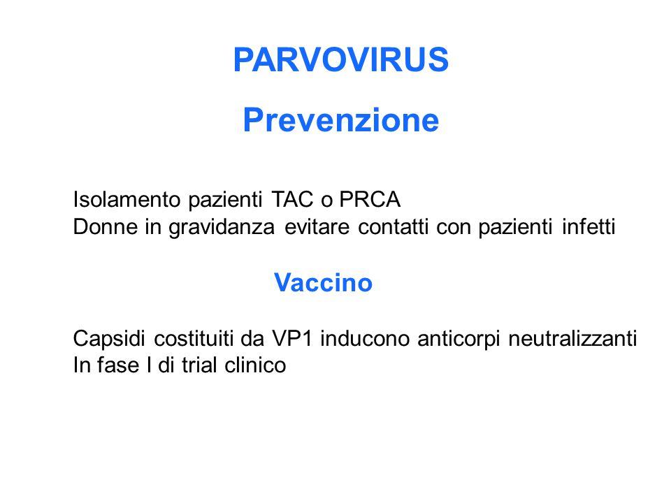 PARVOVIRUS Prevenzione