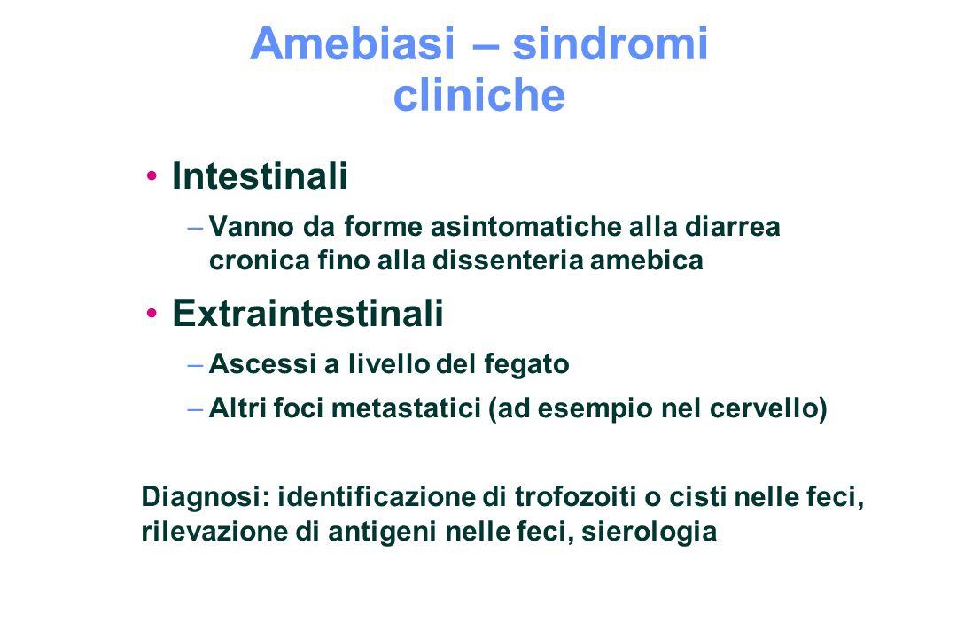 Amebiasi – sindromi cliniche