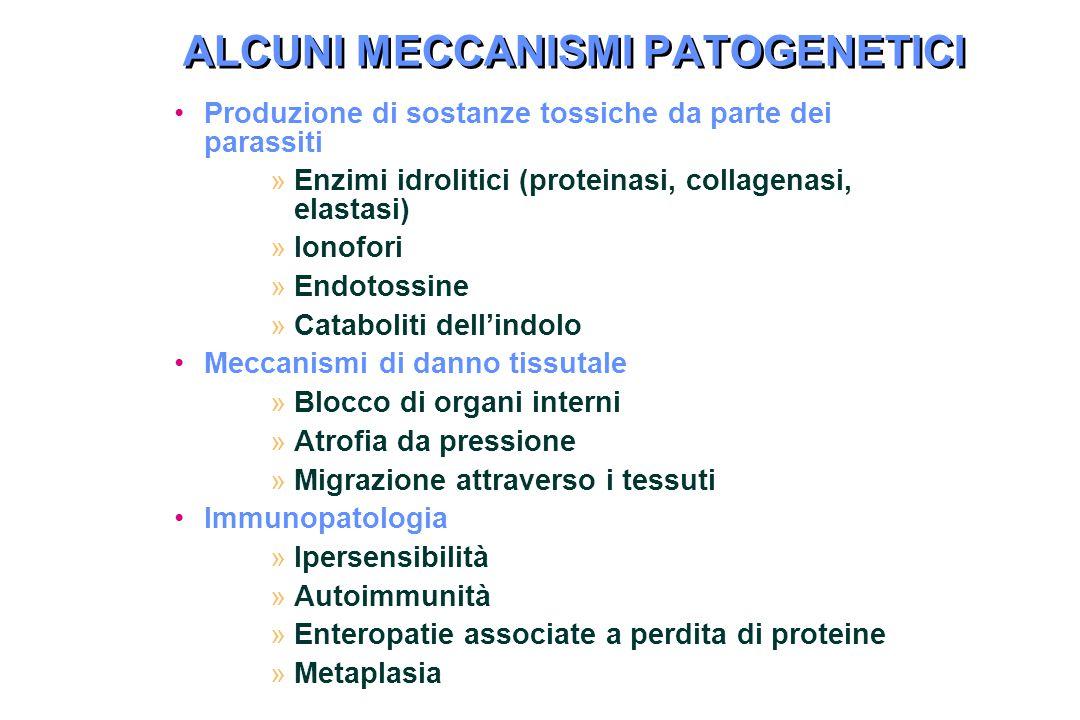 ALCUNI MECCANISMI PATOGENETICI