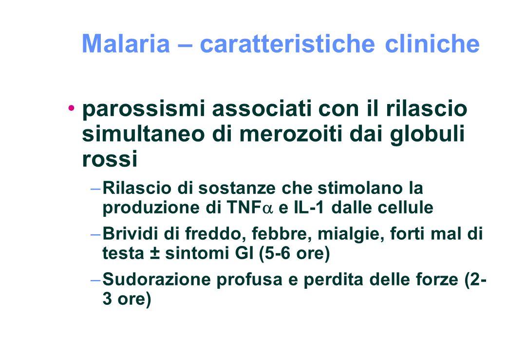 Malaria – caratteristiche cliniche