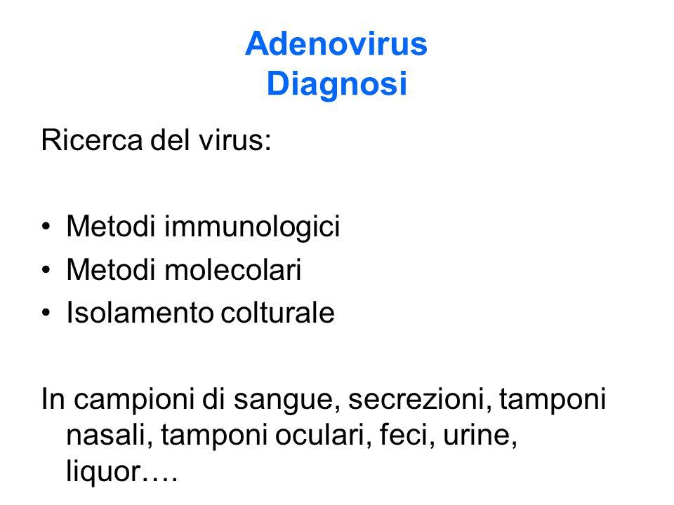 Adenovirus Diagnosi Ricerca del virus: Metodi immunologici