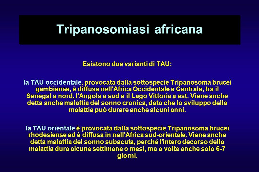 Tripanosomiasi africana
