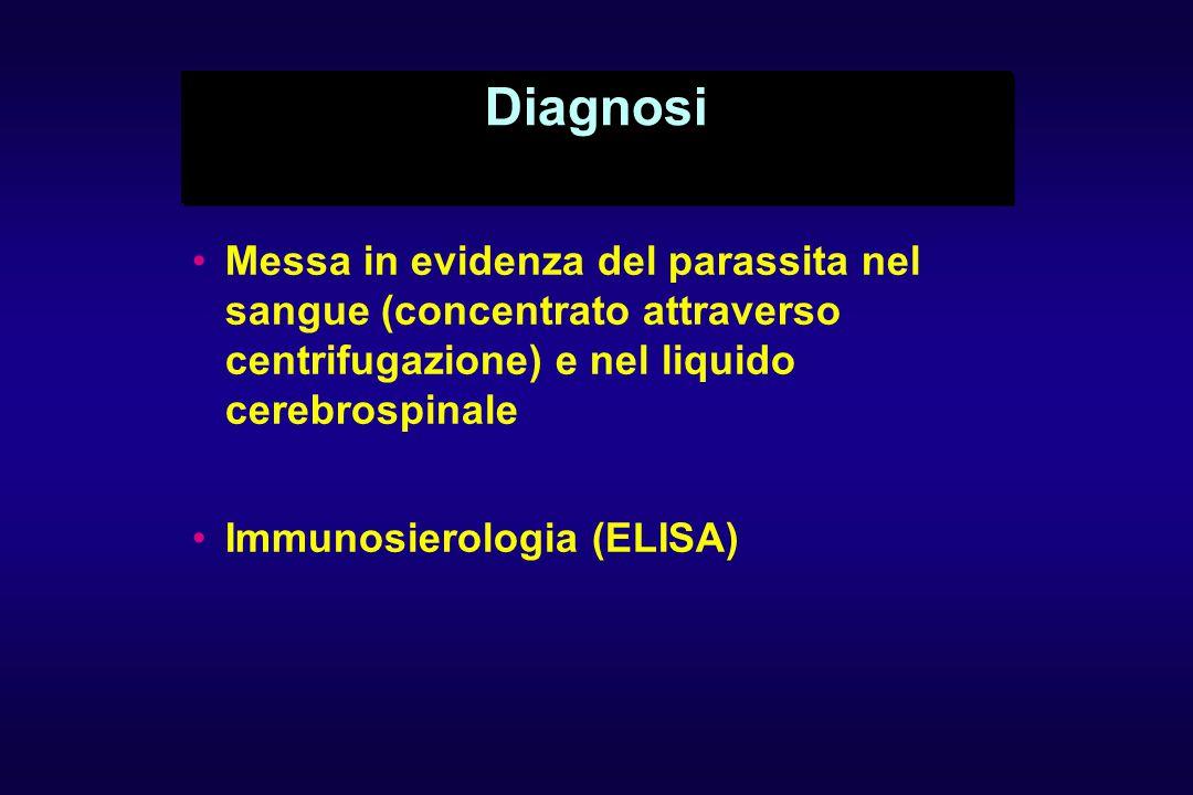 Diagnosi Messa in evidenza del parassita nel sangue (concentrato attraverso centrifugazione) e nel liquido cerebrospinale.