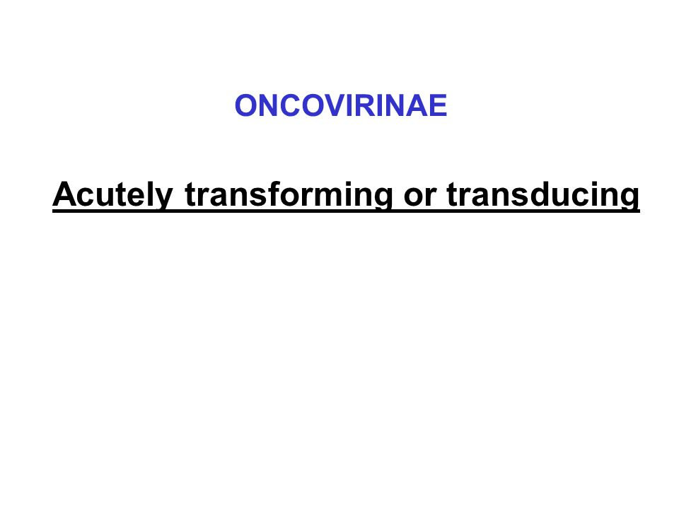 Acutely transforming or transducing