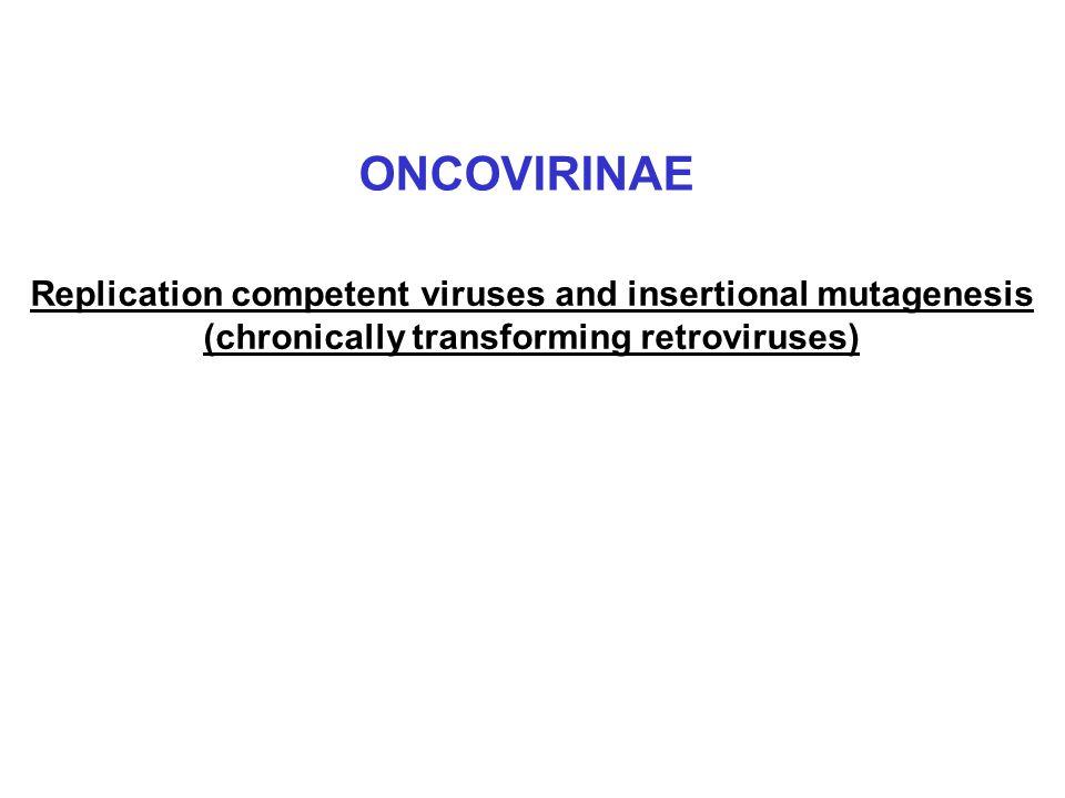 ONCOVIRINAE Replication competent viruses and insertional mutagenesis