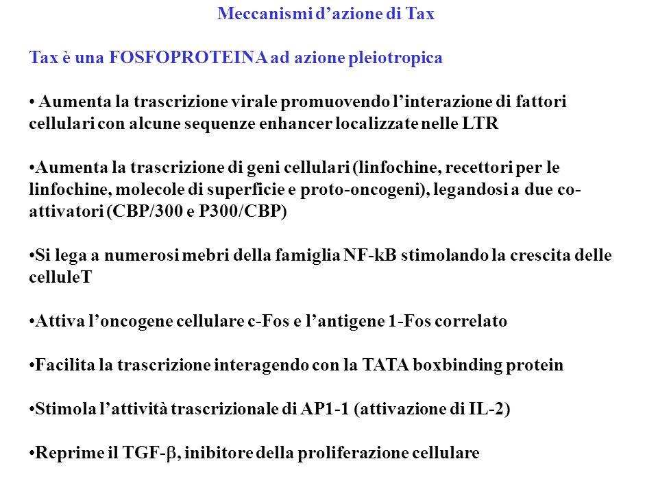 Meccanismi d'azione di Tax