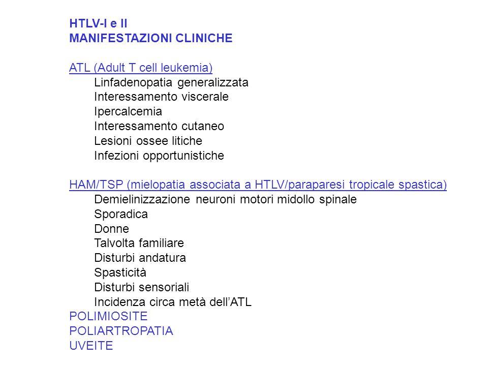 HTLV-I e II MANIFESTAZIONI CLINICHE. ATL (Adult T cell leukemia) Linfadenopatia generalizzata. Interessamento viscerale.