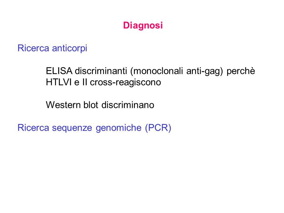Diagnosi Ricerca anticorpi. ELISA discriminanti (monoclonali anti-gag) perchè HTLVI e II cross-reagiscono.