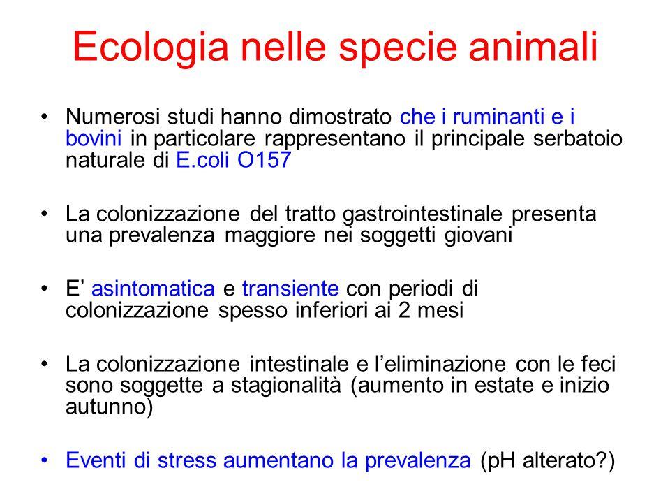 Ecologia nelle specie animali