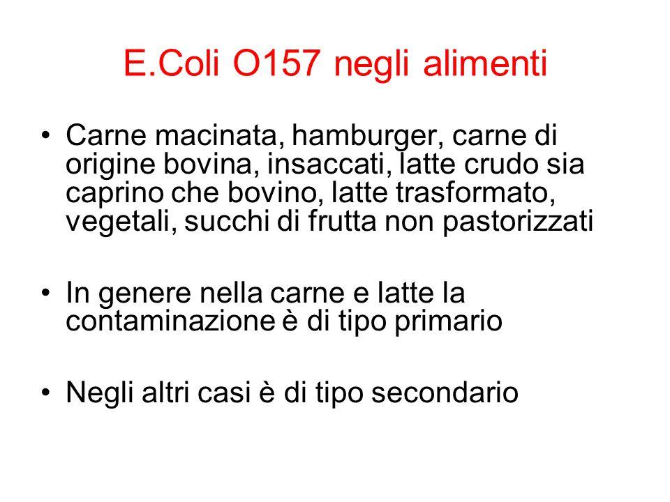 E.Coli O157 negli alimenti