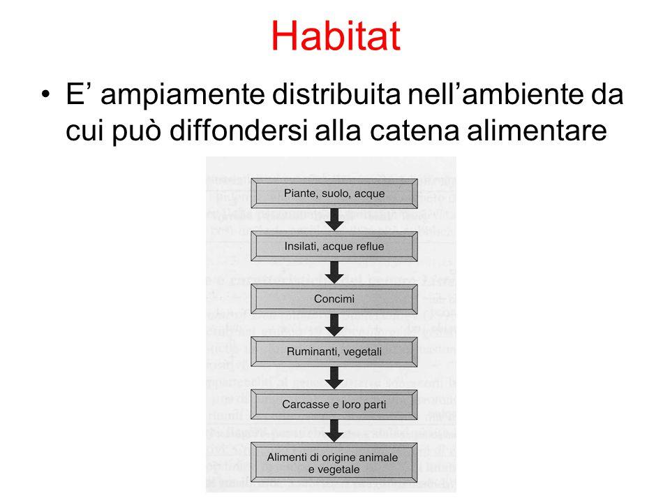 Habitat E' ampiamente distribuita nell'ambiente da cui può diffondersi alla catena alimentare