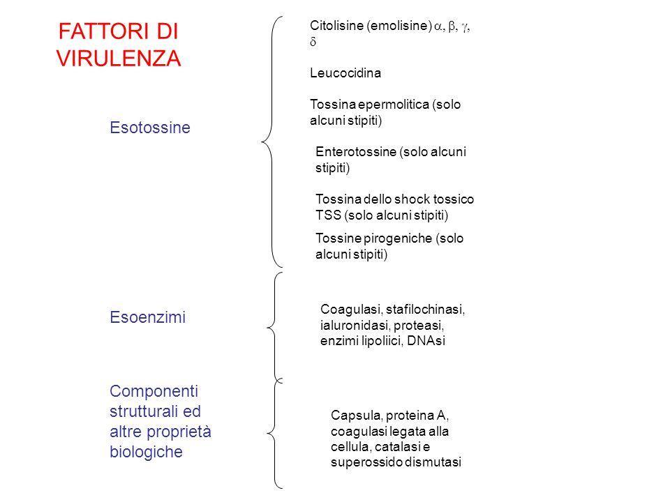 FATTORI DI VIRULENZA Esotossine Esoenzimi