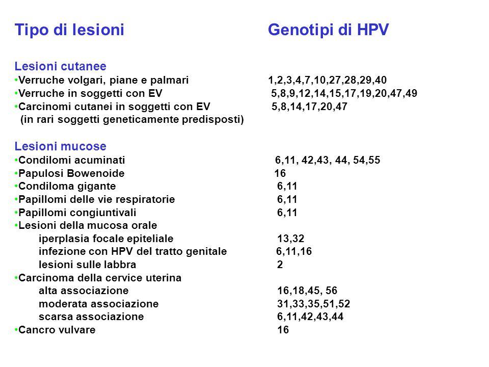 Tipo di lesioni Genotipi di HPV