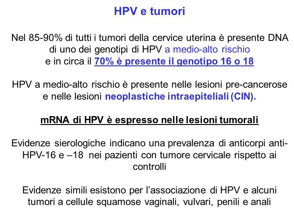 mRNA di HPV è espresso nelle lesioni tumorali
