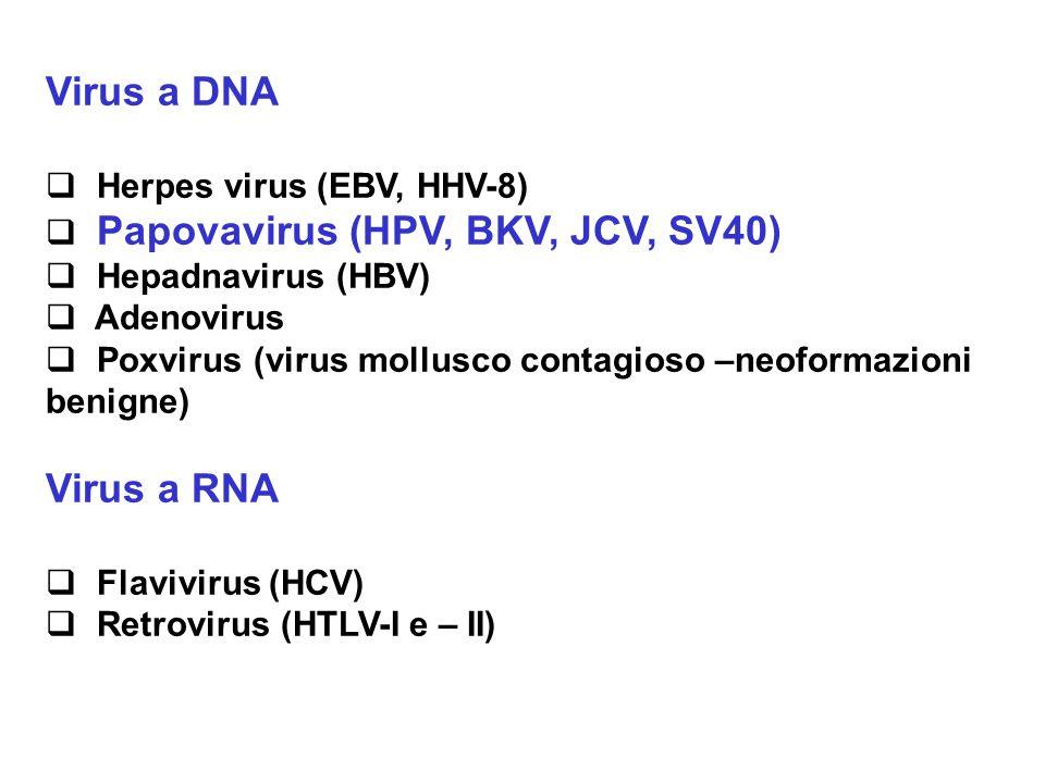 Virus a DNA Virus a RNA Herpes virus (EBV, HHV-8)