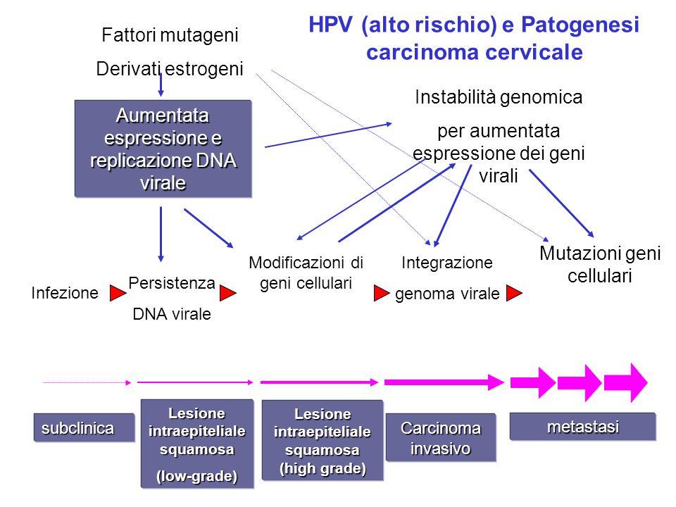 HPV (alto rischio) e Patogenesi carcinoma cervicale