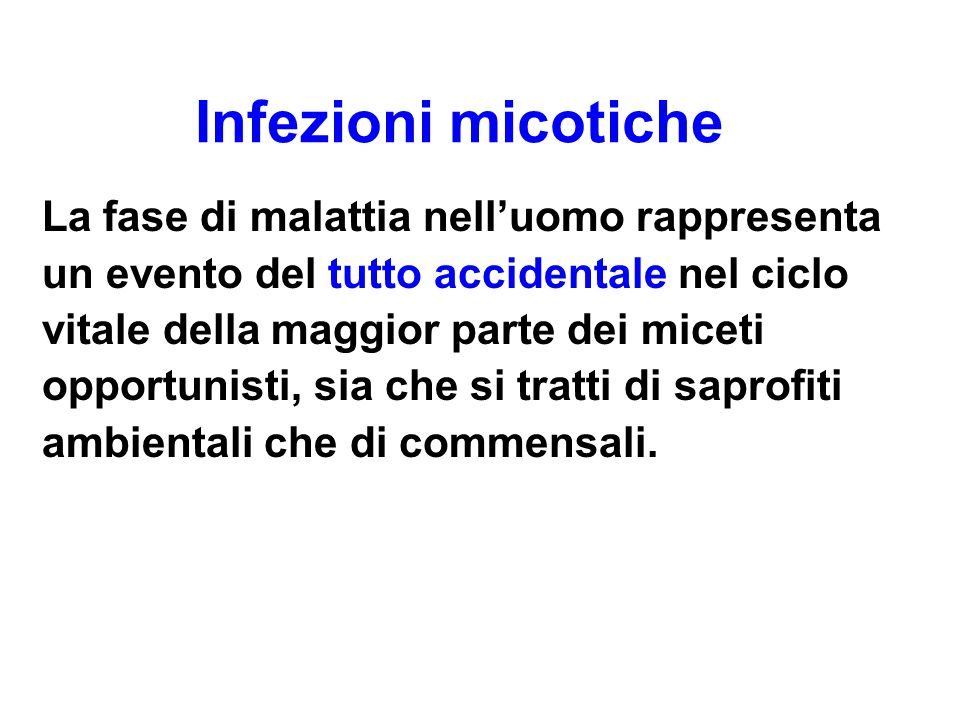 Infezioni micotiche
