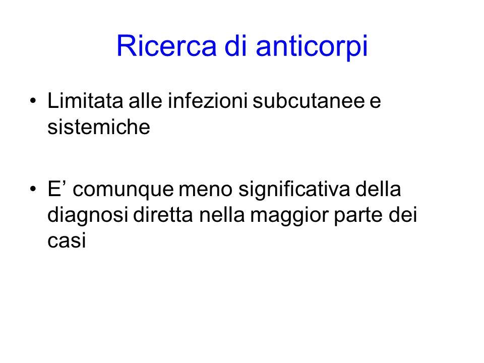 Ricerca di anticorpi Limitata alle infezioni subcutanee e sistemiche