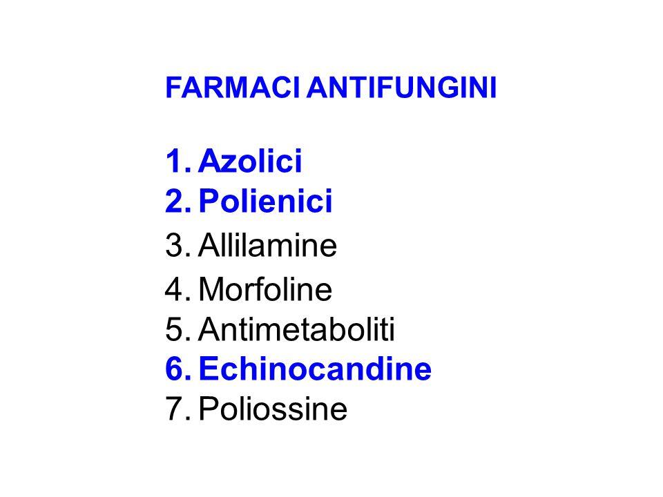 Azolici Polienici Allilamine Morfoline Antimetaboliti Echinocandine