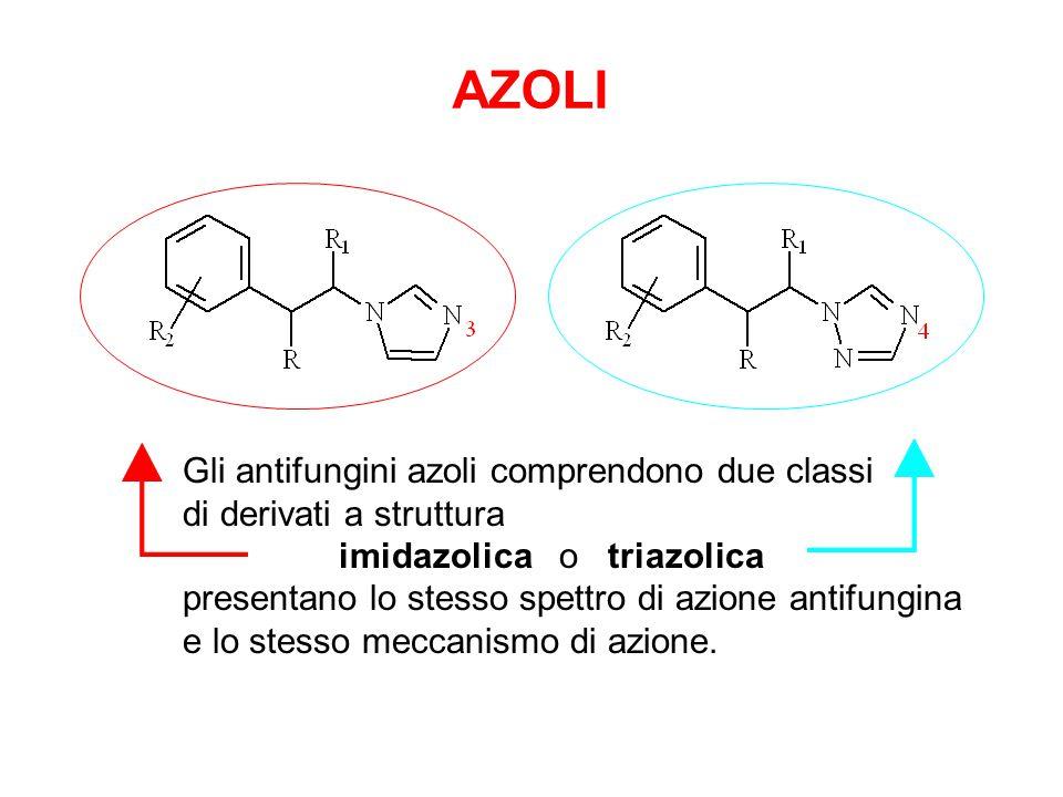 AZOLI Gli antifungini azoli comprendono due classi