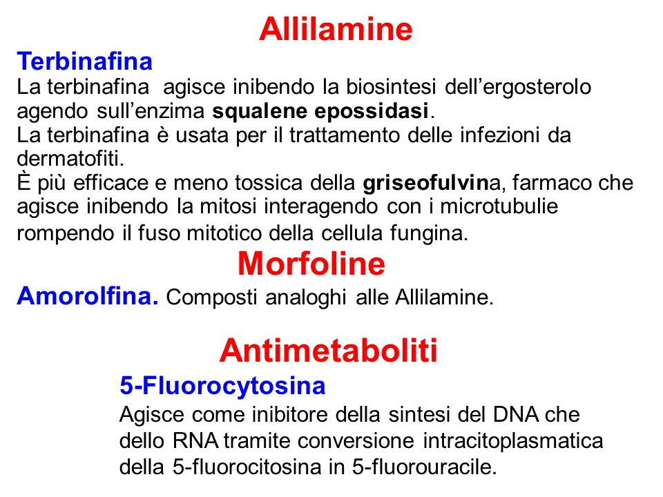 Antimetaboliti Allilamine Terbinafina